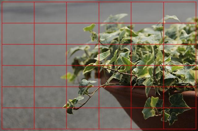 マルチパターン測光の写真