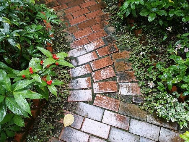 雨に濡れたレンガの舗道