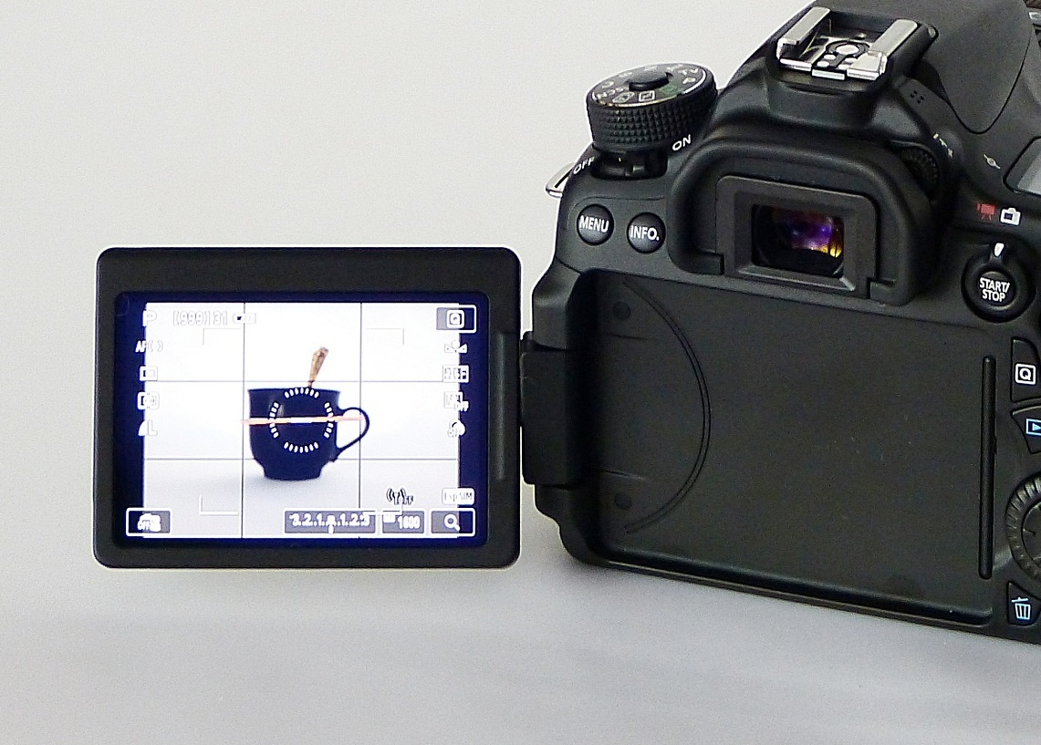 デジタル一眼カメラのモニターで構図を確認している写真